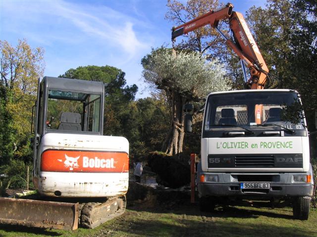 materiel olivier en provence