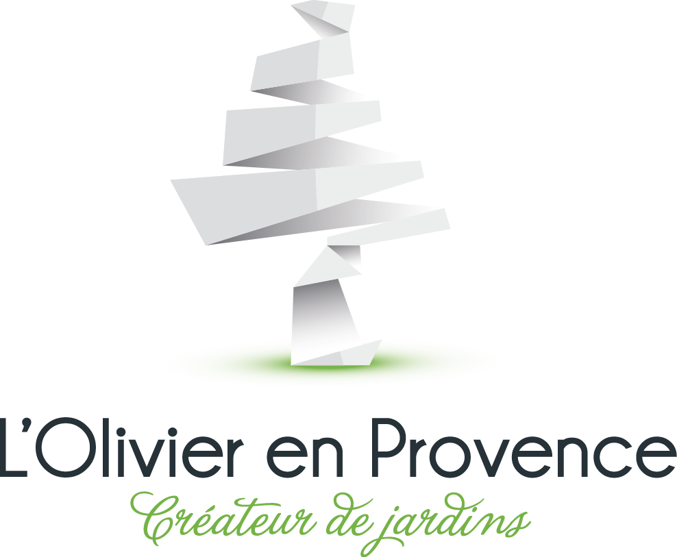 L'Olivier en Provence